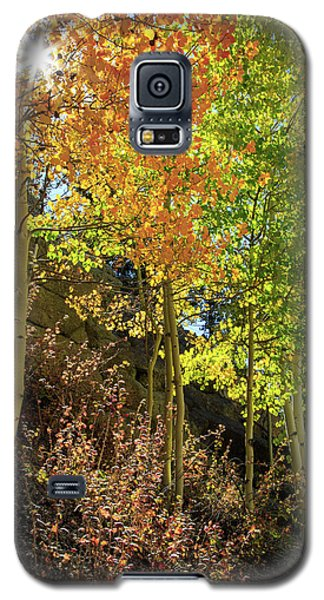 Galaxy S5 Case featuring the photograph Crisp by David Chandler