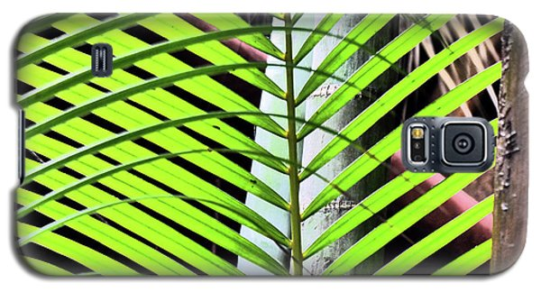 Crisscrossing Palms Galaxy S5 Case