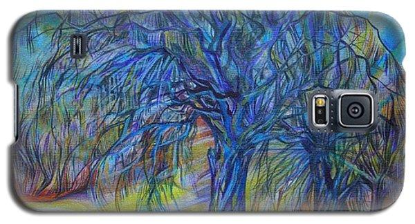 Crystal Light Galaxy S5 Case by Anna  Duyunova