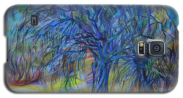 Crystal Light Galaxy S5 Case