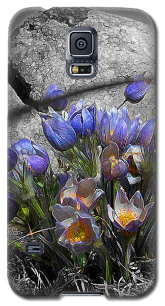 Crocus - Between A Rock And You Galaxy S5 Case by Stuart Turnbull