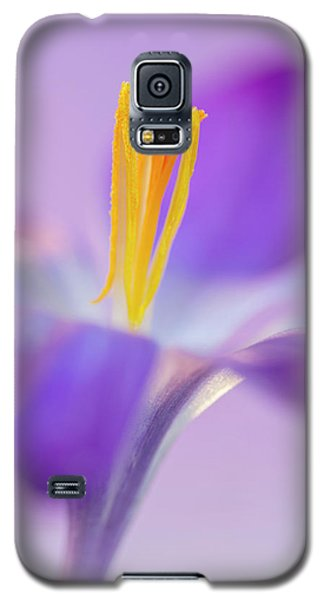 Crocus Stand Proud  Galaxy S5 Case