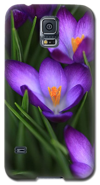 Crocus Vividus Galaxy S5 Case