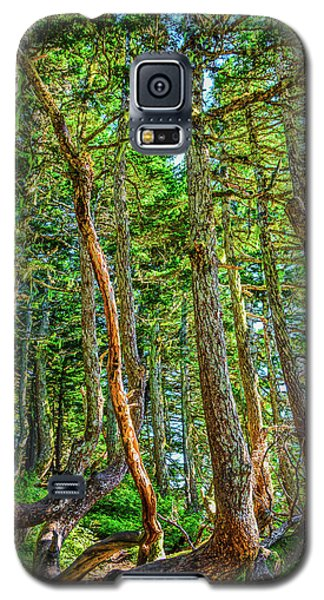 Crooked Trees Of Mt Roberts Galaxy S5 Case