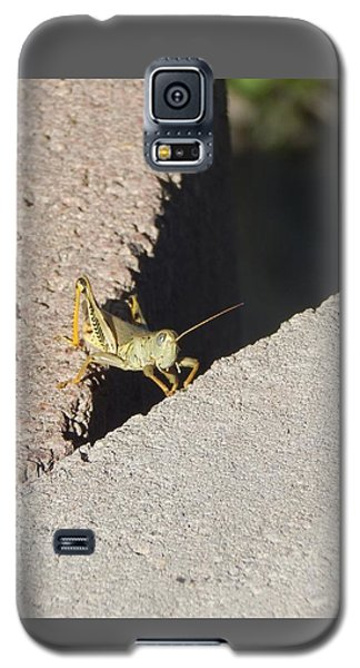 Cross Over Grasshopper Galaxy S5 Case