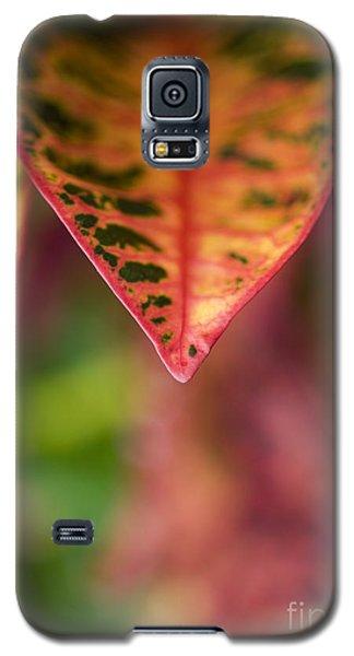 Croton Leaf Macro II Galaxy S5 Case