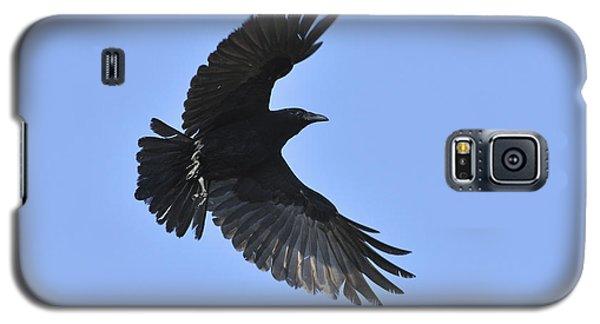 Crow In Flight Galaxy S5 Case
