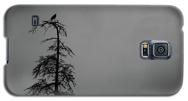 Crow Perched On Tree Top - Black And White Galaxy S5 Case by Matt Harang
