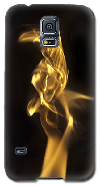 Galaxy S5 Case featuring the photograph Aves by Steven Poulton