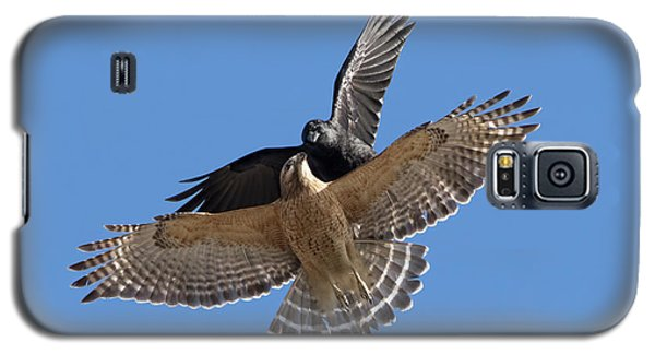 Galaxy S5 Case featuring the photograph Crow Vs Hawk by Mircea Costina Photography