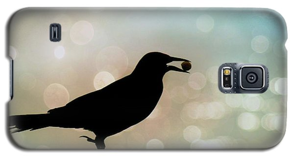 Galaxy S5 Case featuring the photograph Crow With Pistachio by Benanne Stiens
