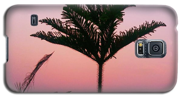 Crown In Pink Sky Galaxy S5 Case