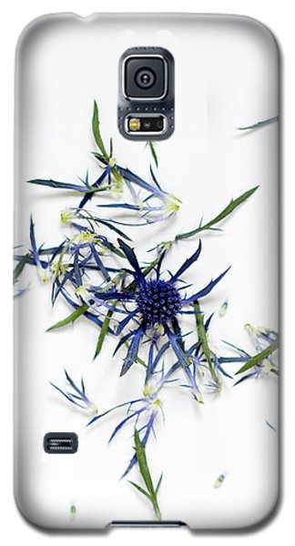 Crushed Blue Thistle Petals Galaxy S5 Case
