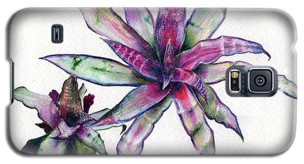 Cryptanthus Richard Lum Galaxy S5 Case