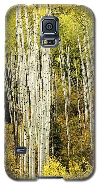 Crystal Aspens Galaxy S5 Case