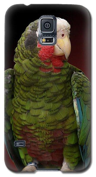 Cuban Amazon Parrot Galaxy S5 Case