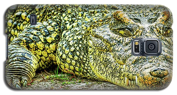 Cuban Croc Galaxy S5 Case by Josy Cue