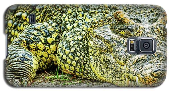 Cuban Croc Galaxy S5 Case
