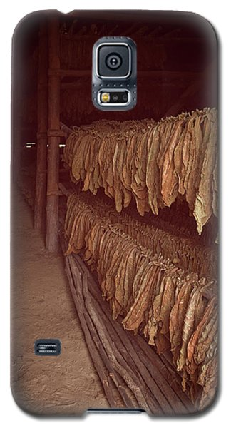 Galaxy S5 Case featuring the photograph Cuban Tobacco Shed by Joan Carroll