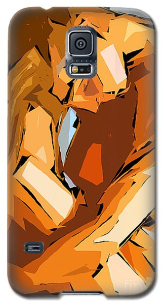 Cubism Series Ix Galaxy S5 Case