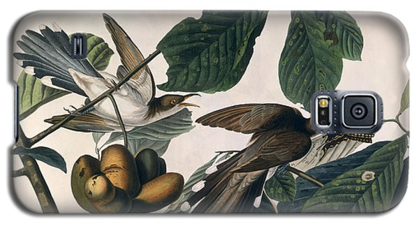 Cuckoo Galaxy S5 Case by John James Audubon
