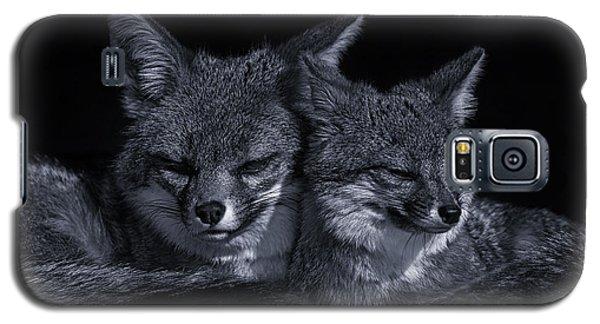 Cuddle Buddies  Galaxy S5 Case by Brian Cross