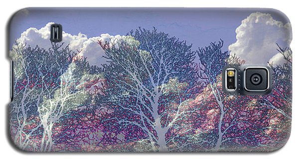 Galaxy S5 Case featuring the photograph Cumulus And Trees by Nareeta Martin