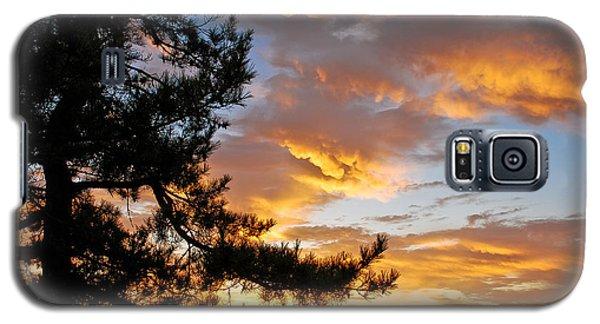 Cumulus Clouds Plum Island Galaxy S5 Case