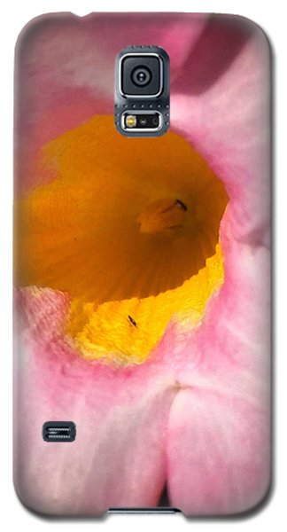 Cup Of Nectar Galaxy S5 Case