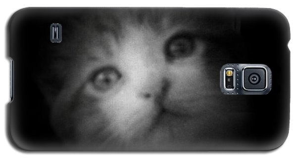 Galaxy S5 Case featuring the photograph Curiosity by Betty Northcutt
