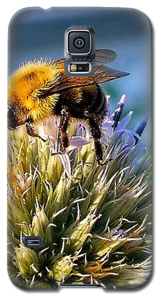 Curious Bee Galaxy S5 Case