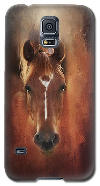 Curious Gaze  Galaxy S5 Case by Toni Hopper