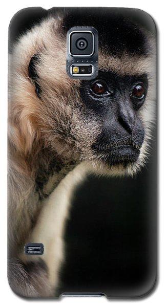 Curious Galaxy S5 Case