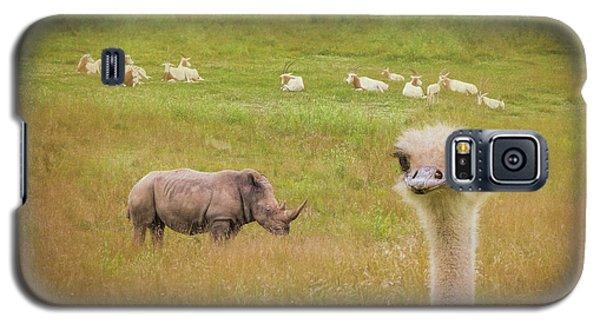 Ostrich Galaxy S5 Case - Curious Ostrich And White Rhino by Tom Mc Nemar