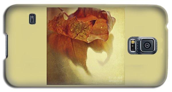 Curled Autumn Leaf Galaxy S5 Case by Lyn Randle