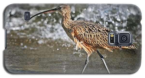 Curlew And Tides Galaxy S5 Case