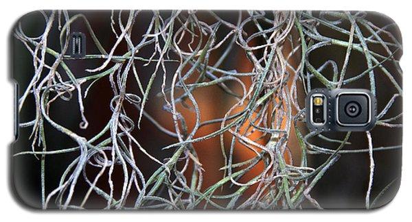 Galaxy S5 Case featuring the photograph Curls by Lynda Lehmann
