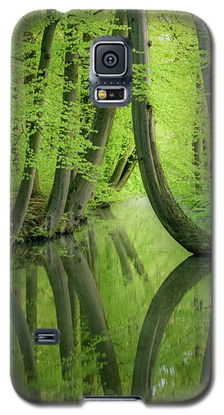 Curved Trees Galaxy S5 Case
