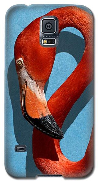 Curves, A Head - A Flamingo Portrait Galaxy S5 Case