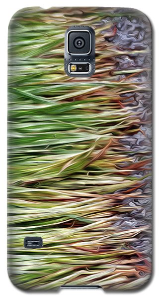 Cut Grass And Pebbles Galaxy S5 Case