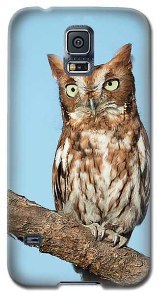 Cute As A Button Galaxy S5 Case
