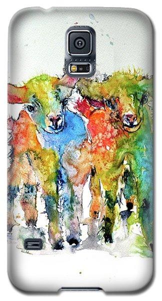 Cute Baby Goats Galaxy S5 Case by Kovacs Anna Brigitta