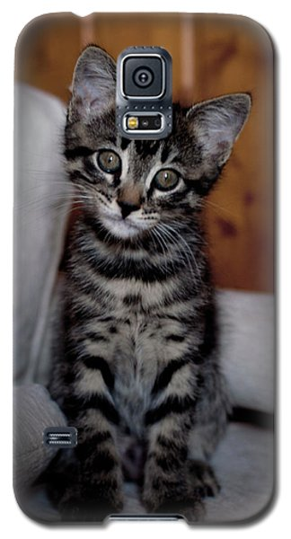 Galaxy S5 Case featuring the photograph Cute by Laura Melis