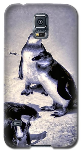 Galaxy S5 Case featuring the photograph Cute Penguins by Pennie  McCracken