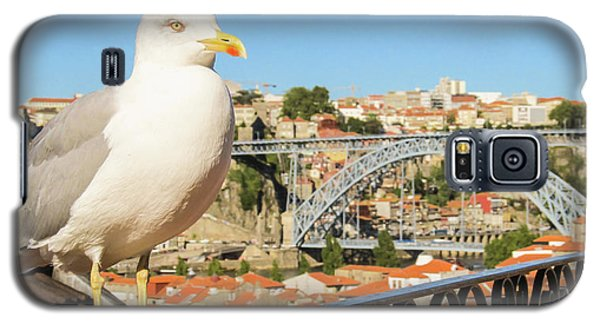 Cute Seagull And Porto's Cityscape Galaxy S5 Case