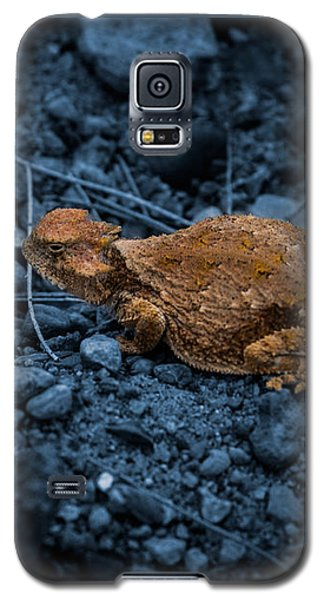 Cyanotype Horned Toad Galaxy S5 Case