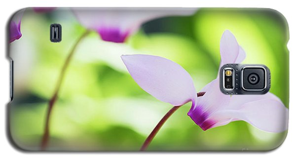Galaxy S5 Case featuring the photograph Cyclamen Persicum by Tim Gainey