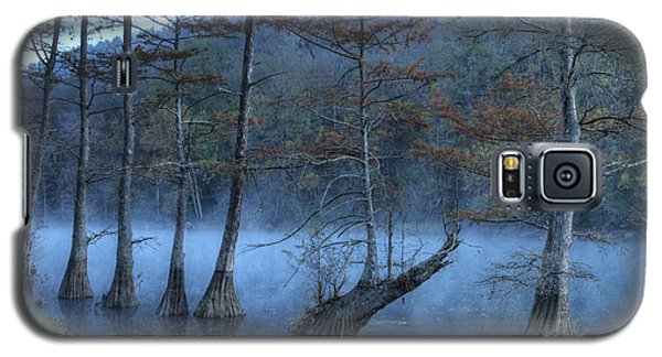 Galaxy S5 Case featuring the photograph Cypress Awakening by Tamyra Ayles