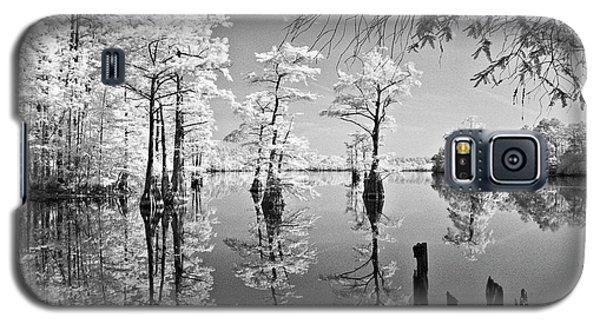 Cypress In Walkers Mill Pond Galaxy S5 Case by Bob Decker