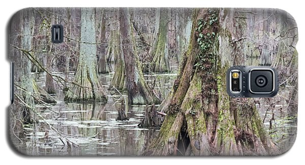 Cypress Swamp 01 Galaxy S5 Case